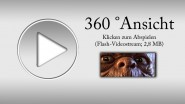 https://www.thor3d.de/wp/wp-content/uploads/2010/01/Animationsscreen_morn_808.jpg